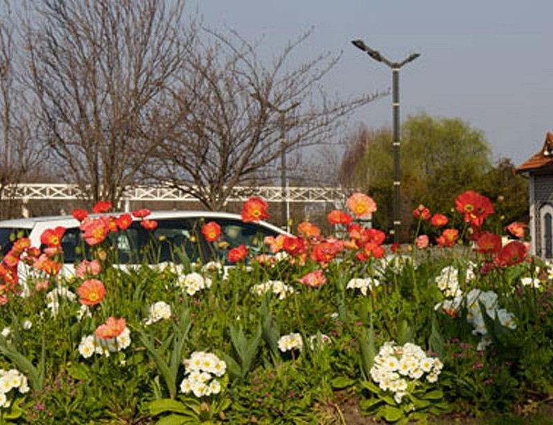 Jardins spécialisés
