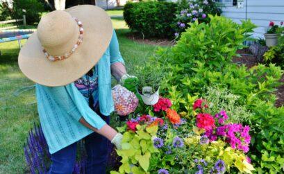 Decoration fleur dans jardin