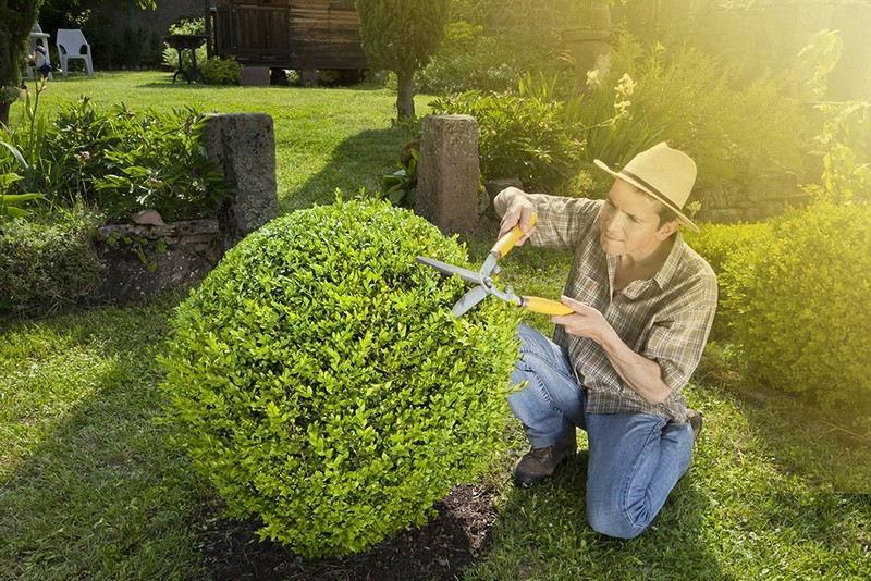 Choix d'un jardinier paysagiste