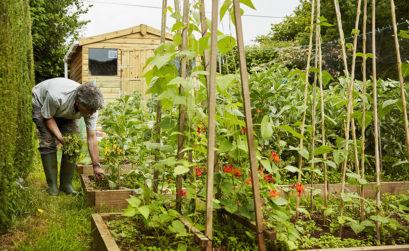 coffres de jardin