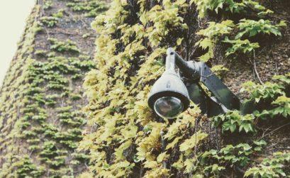 jardin et alarme sans fil