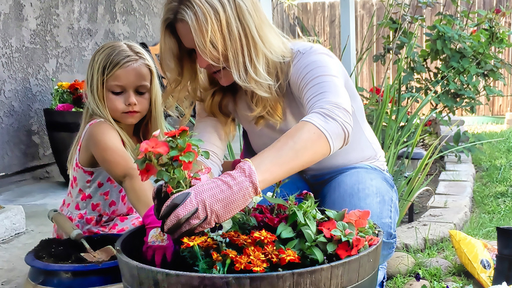 jardinothérapie