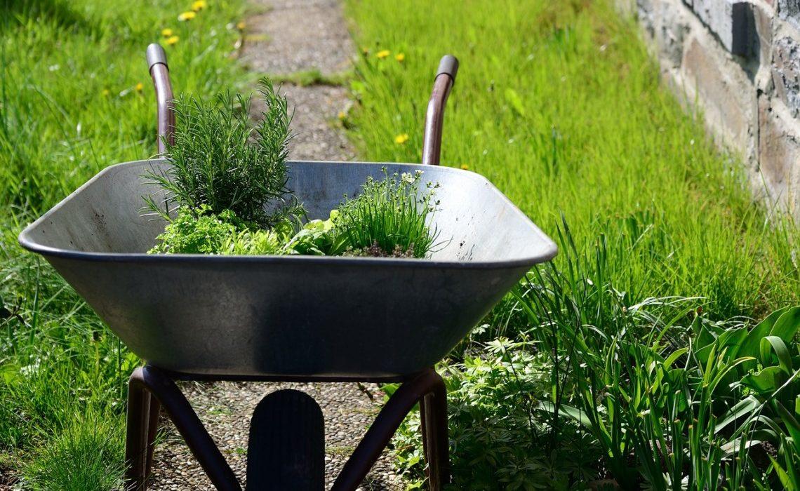 outils pour son jardin