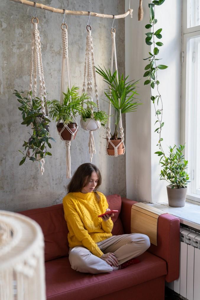plante retombante