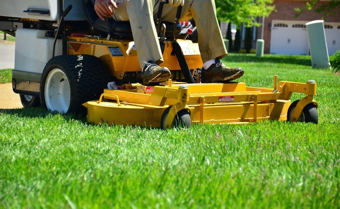 préparer sa pelouse