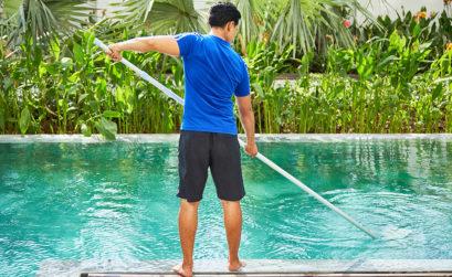 rattraper piscine verte